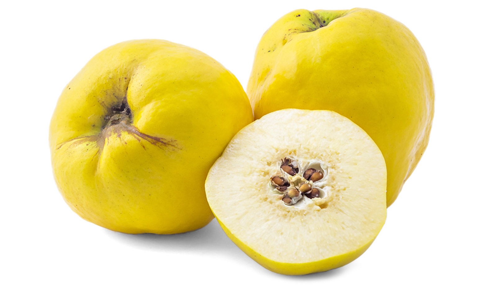 Quince Image