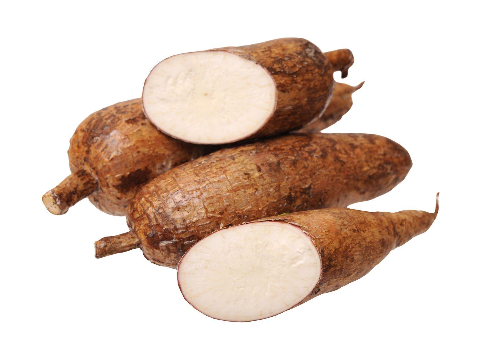 Yuca Root Image
