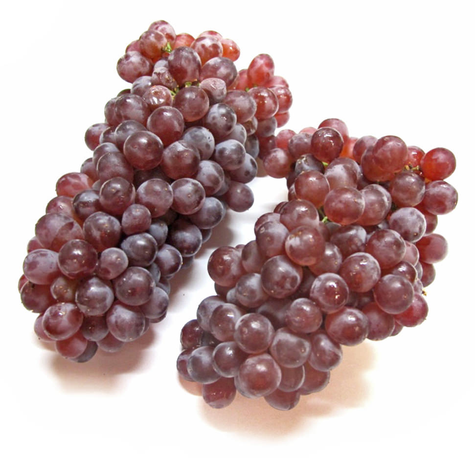 Champagne Grapes Image