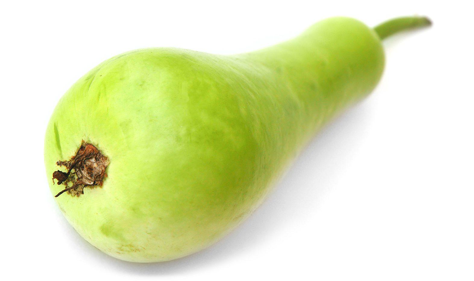Opo Squash Image