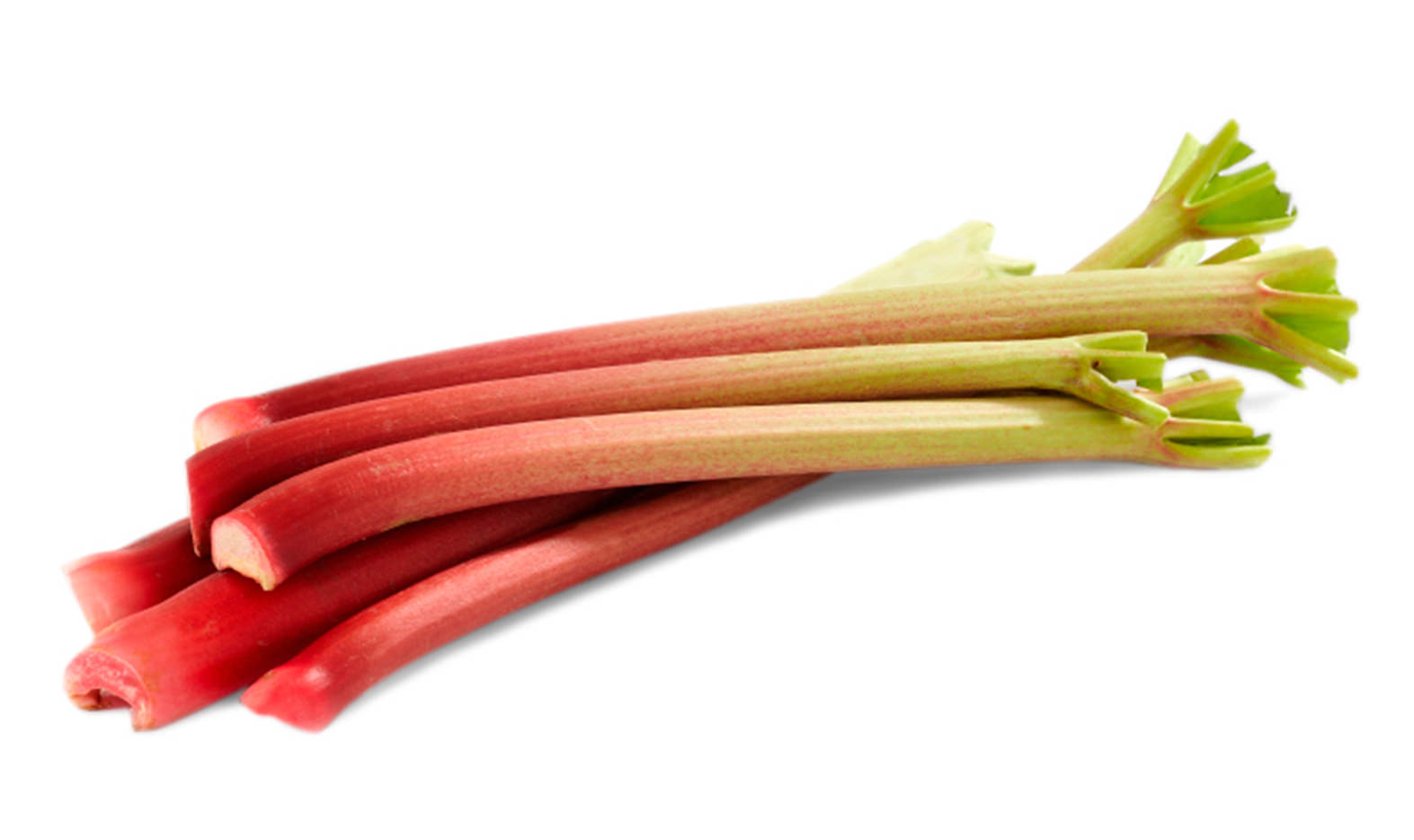 Rhubarb Image
