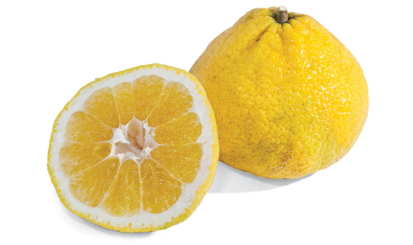 UGLI<sup>®</sup> (Uniq) Fruit Image