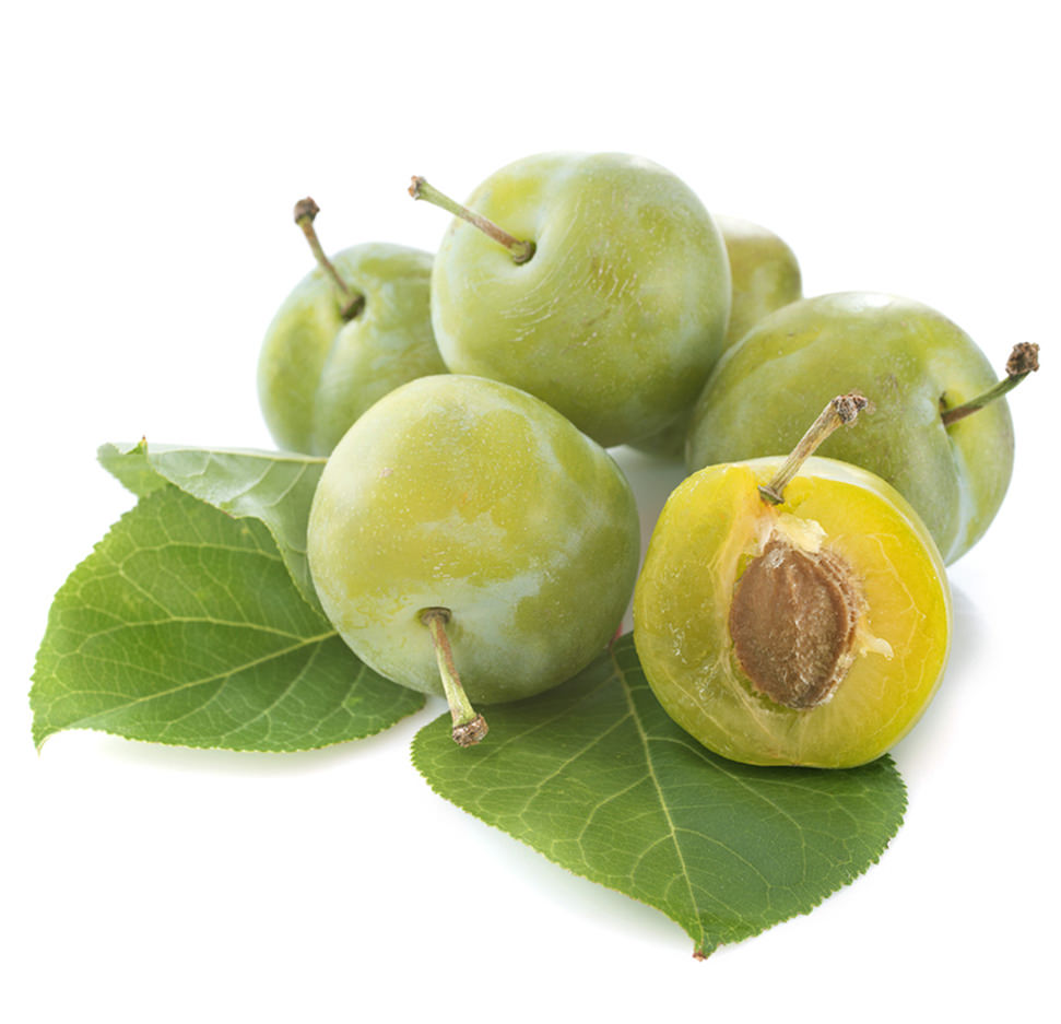 Greengage Plums Image