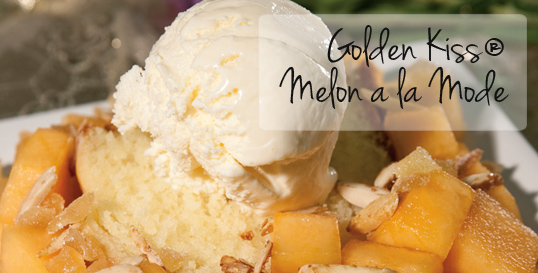 Golden Kiss® Melon a la Mode