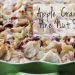 Apple, Cranberry and Pine Nut Stuffing
