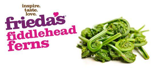 Frieda's Specialty Produce - Fiddlehead Fern