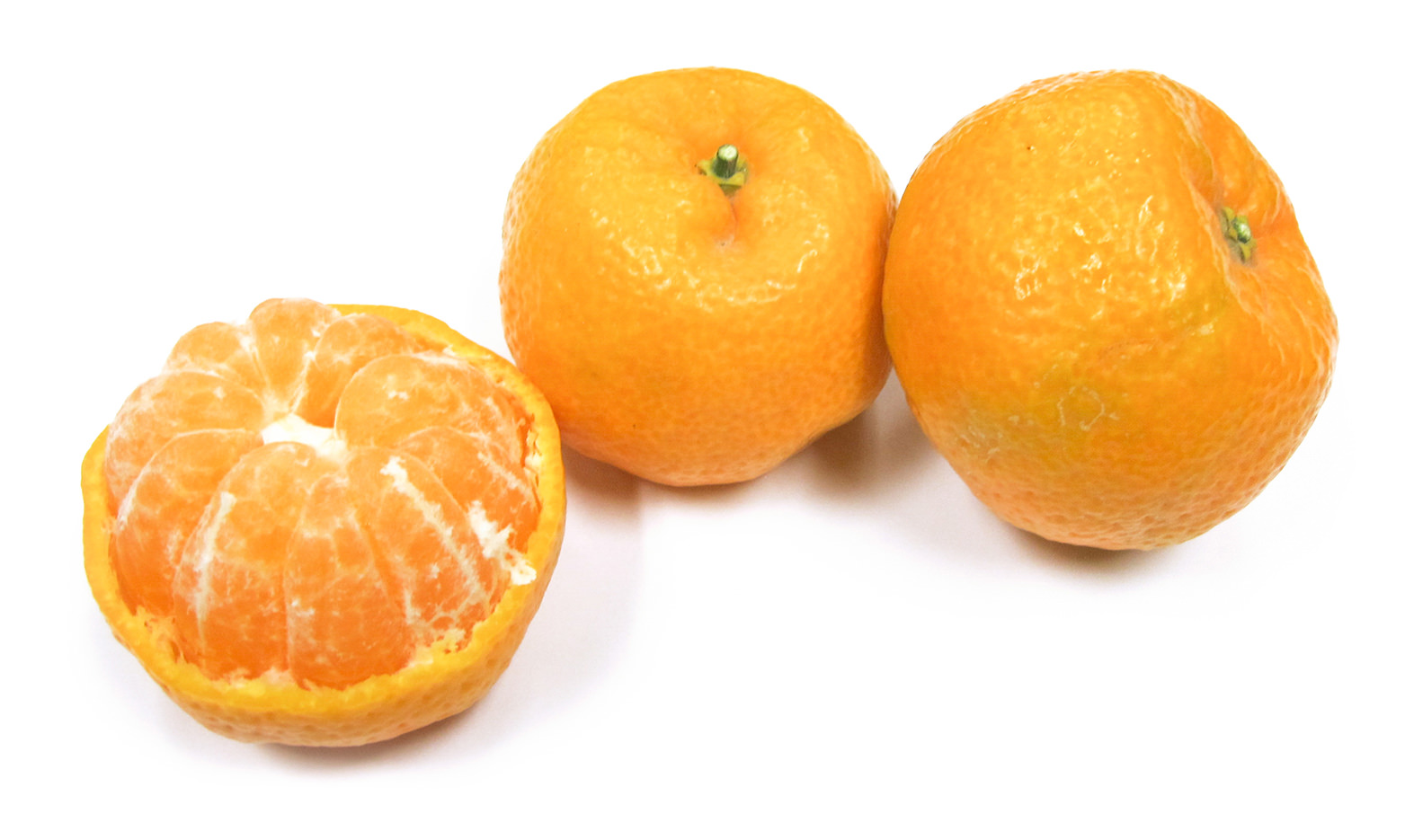 Kishu Mandarin Image