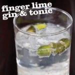 Finger Lime Gin & Tonic