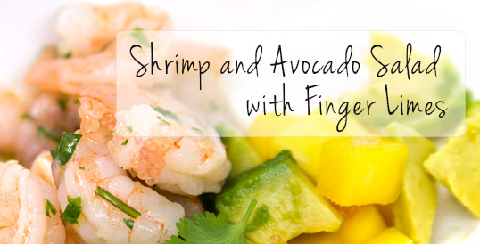 Shrimp and Avocado Salad with Finger Limes