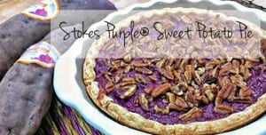 Frieda's Specialty Produce - Stokes Purple Sweet Potato Pie
