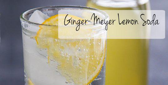 Frieda's Specialty Produce - Ginger Meyer Lemon Soda