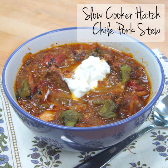 stew nefi s green chile stew pork green chili pork stew slow slow ...