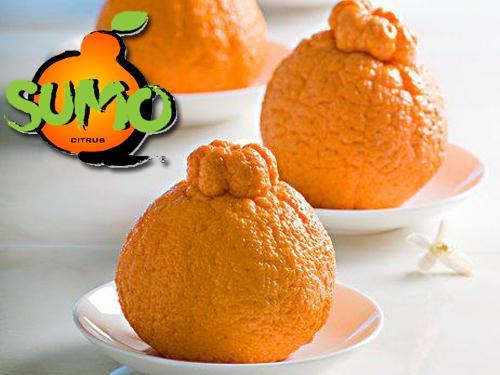Frieda's Specialty Produce - What's on Karen's Plate? - Sumo Citrus
