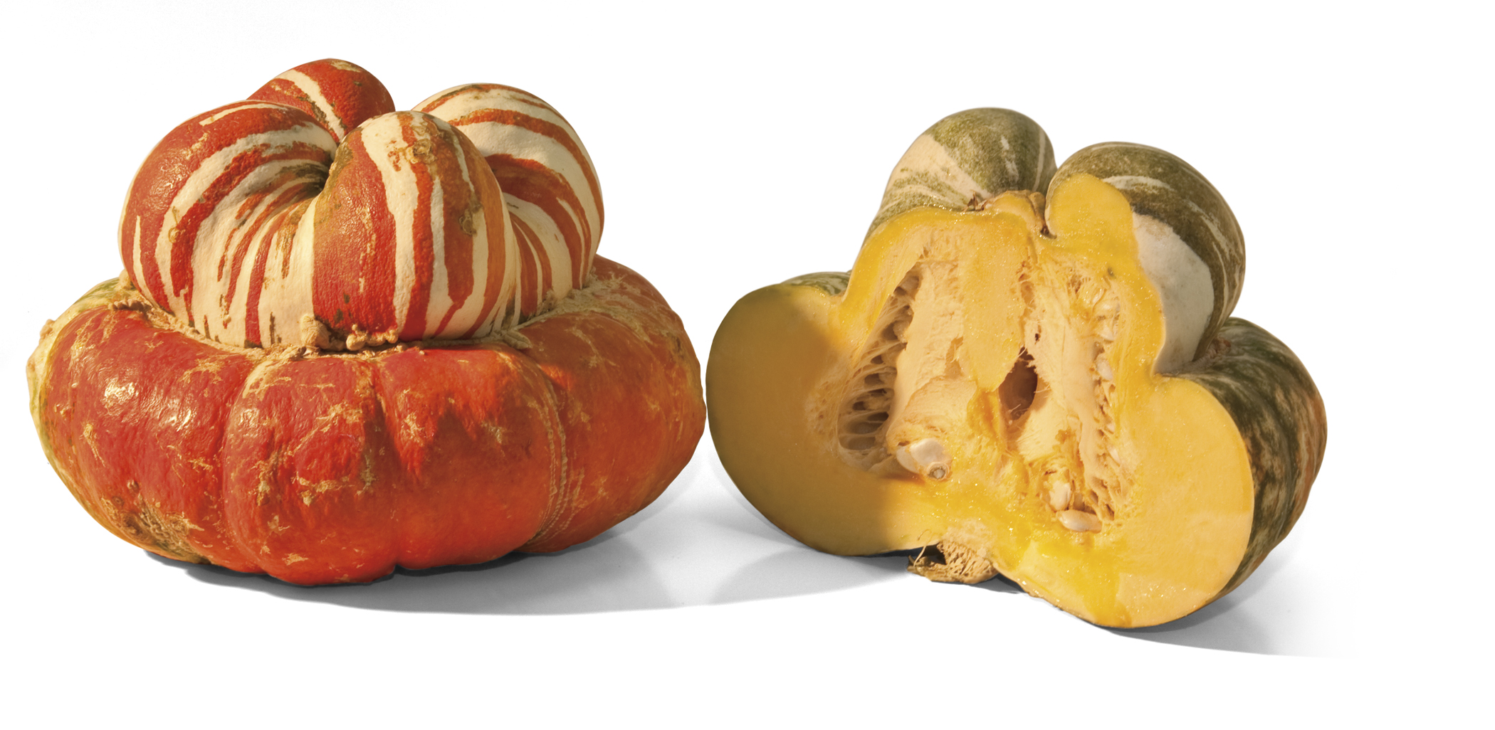 Frieda's Specialty Produce - Turban Squash