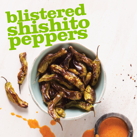 Frieda's Specialty Produce - Blistered Shishito Peppers