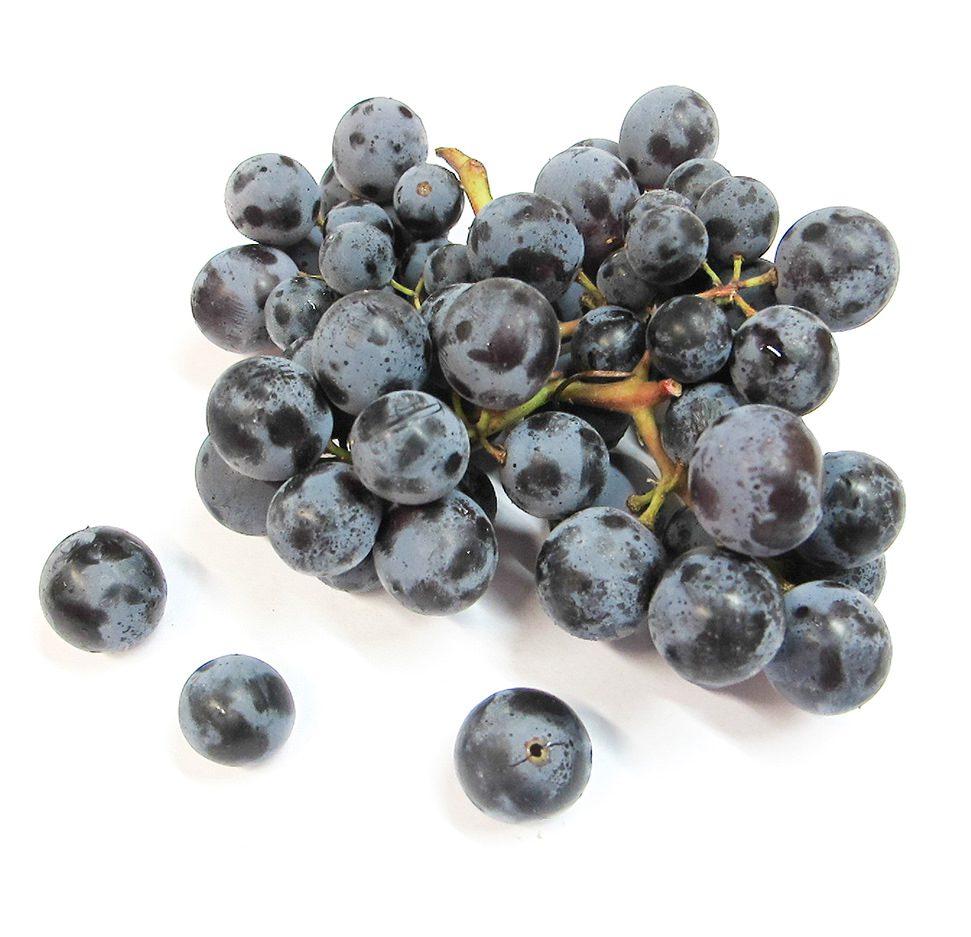 Thomcord Grapes Image