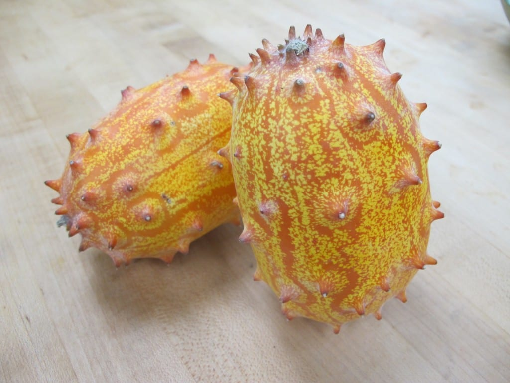 Frieda's Specialty Produce - Kiwano - Horned Melon