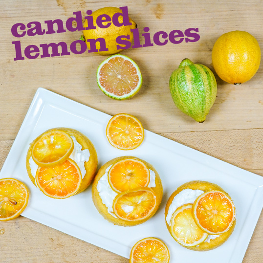 Frieda's Specialty Produce - Candied Lemon Slices