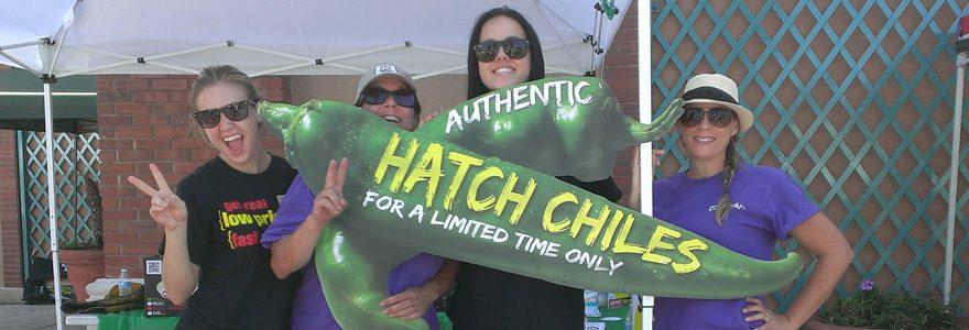 HatchSlide_1