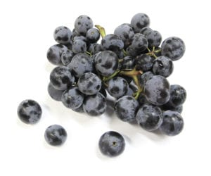 Frieda's Specialty Produce - Thomcord Grapes