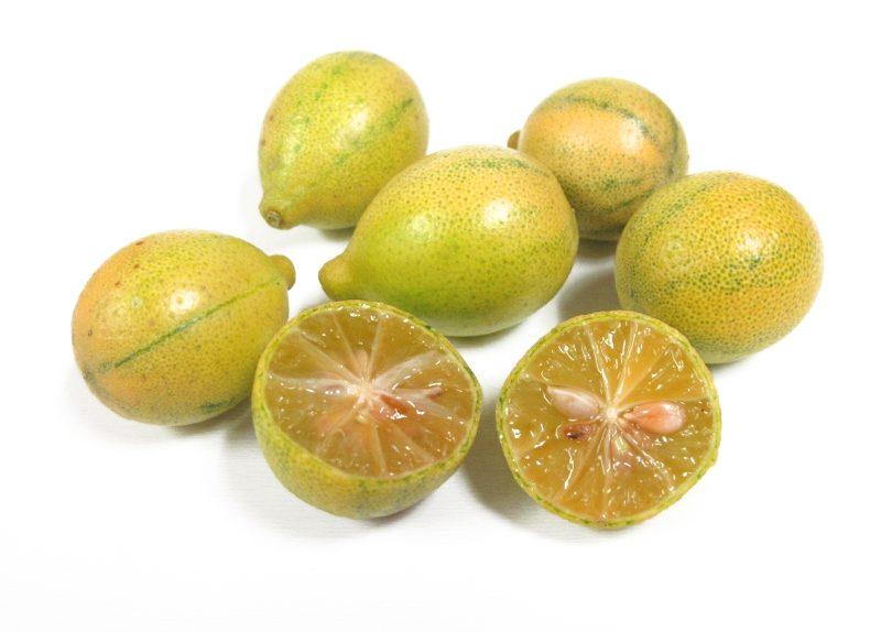 Frieda's Specialty Produce - Centennial Kumquat