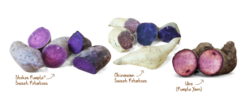 Frieda's Specialty Produce - Purple Sweet Potato Guide