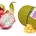 Frieda's Specialty Produce - Rosh Hashana 2017