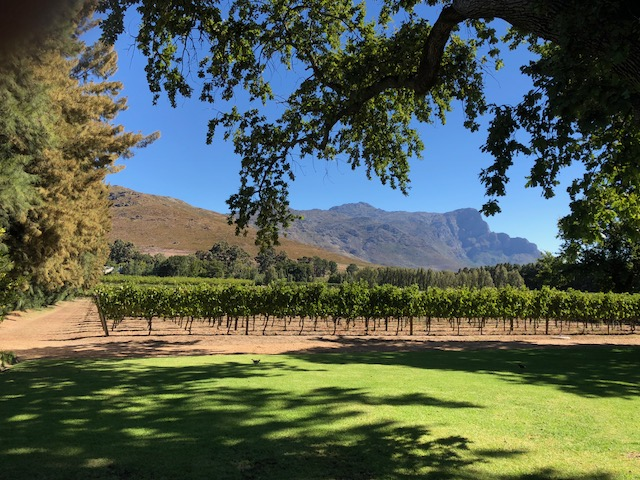 Karen's Blog - Franschhoek - Maison Estate - South Africa