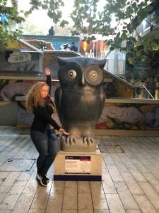 Karen's Blog - Auckland - Sophia Jackson - Owls - The Big Hoot