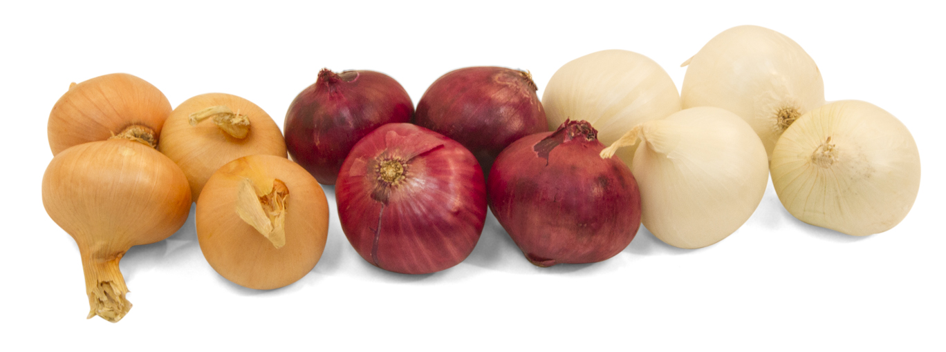 Frieda's Specialty Produce - Boiler Onions