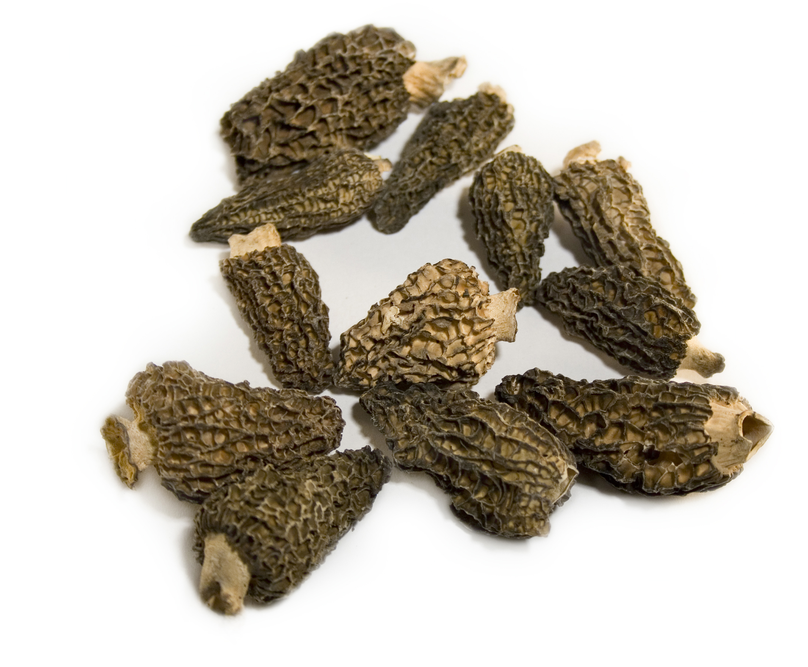 Frieda's Specialty Produce - Dried Morel Mushrooms