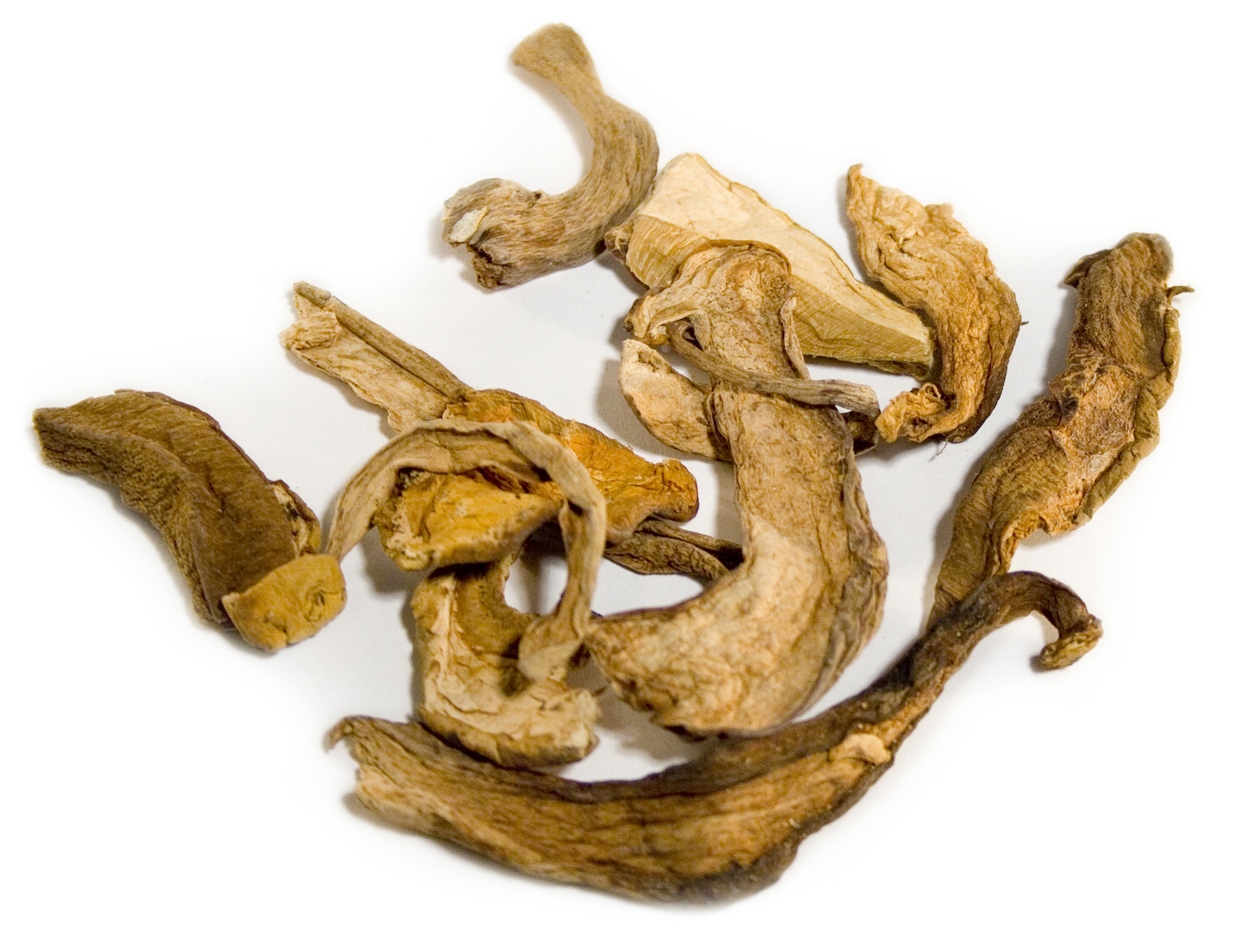 Frieda's Specialty Produce - Dried Porcini Mushrooms