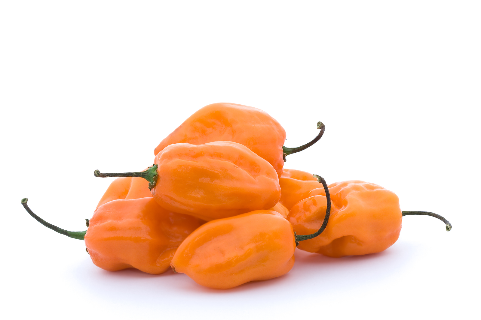 Orange Habanero Peppers Image