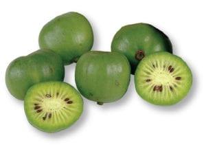 Frieda's Specialty Produce - Kiwi Berries
