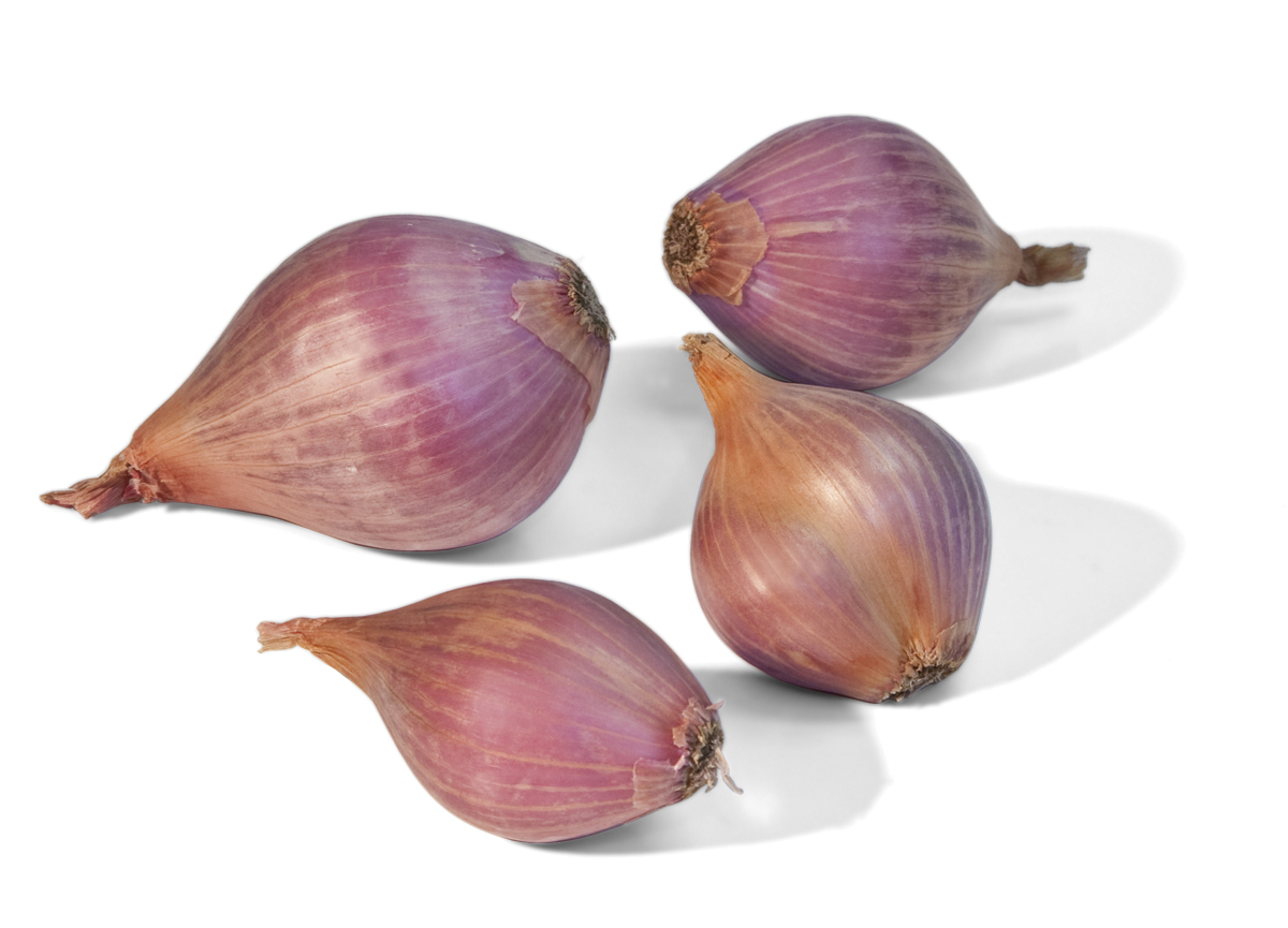 Frieda's Specialty Produce - Shallots