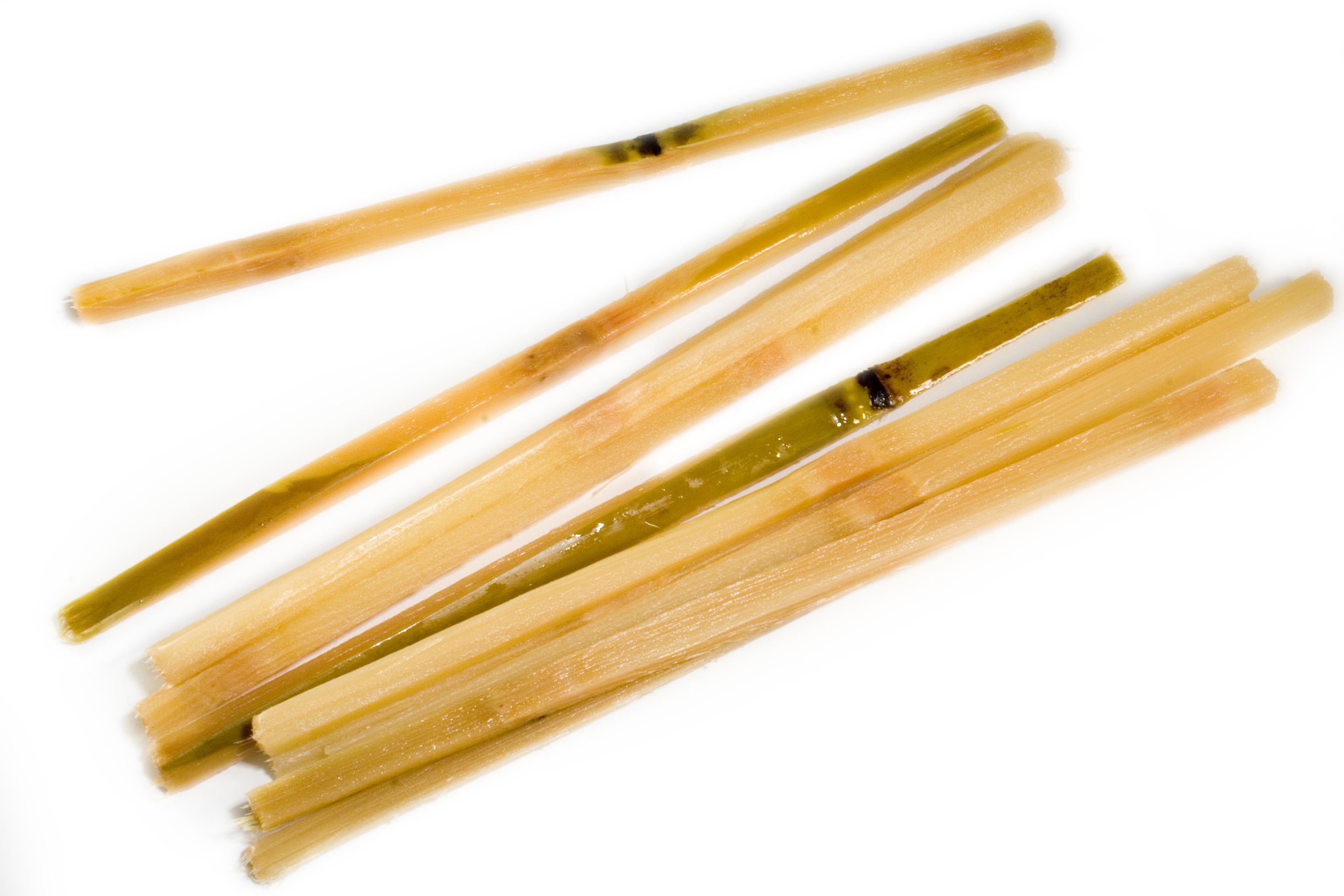 Frieda's Specialty Produce - Sugar Cane Swizzle Sticks