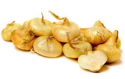 Frieda's Specialty Produce - Cipolline Onions