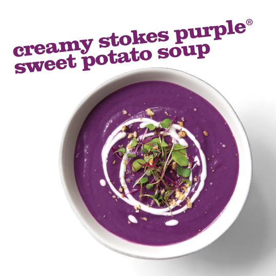 Frieda's Specialty Produce - Stokes Purple Sweet Potato Soup